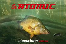 Atomic Yellowbelly Corflute